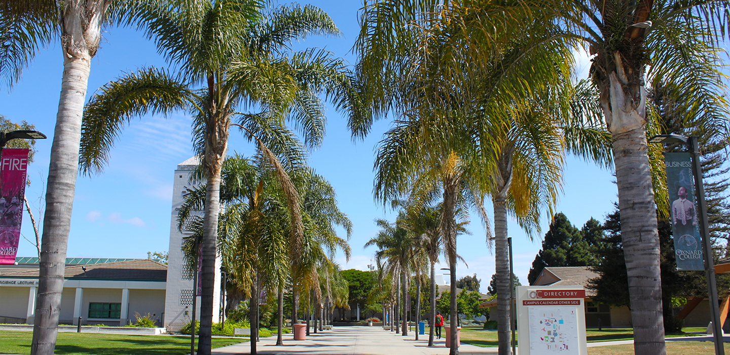 Oxnard Palm-Lined Campus Walk